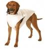 Reversível colete para cão