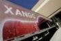 Xango, uma empresa que actua na area da saúde