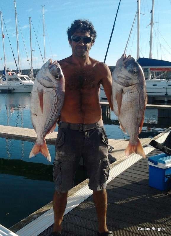 Pesca despotiva em portugal