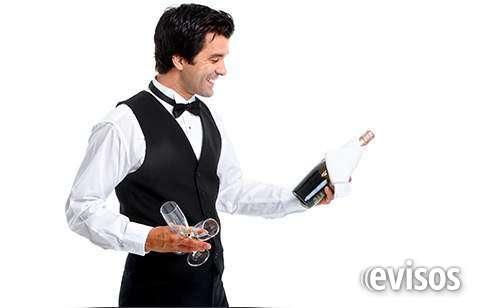 Barman, garçons / a, assistente de cozinheiro
